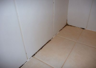 Effects of leaking shower - Before